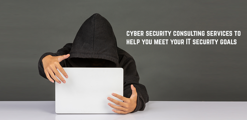 Cyber Security consultant Miami
